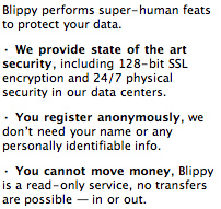 Blippy's security measures