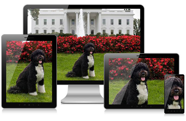 W3C responsive images art direction