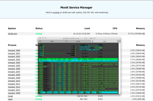 Skribit Dev: Monitoring with Monit and htop